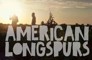 American Longspurs