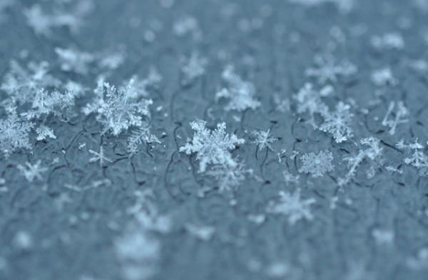 Snow Science - Preschool Saturday Science Class