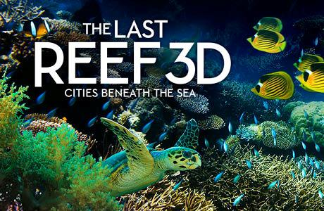 The Last Reef 3D: Cities Beneath The Sea - IMAX Theater